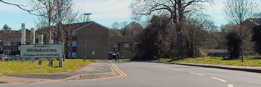 A History of Whitebushes, Surrey